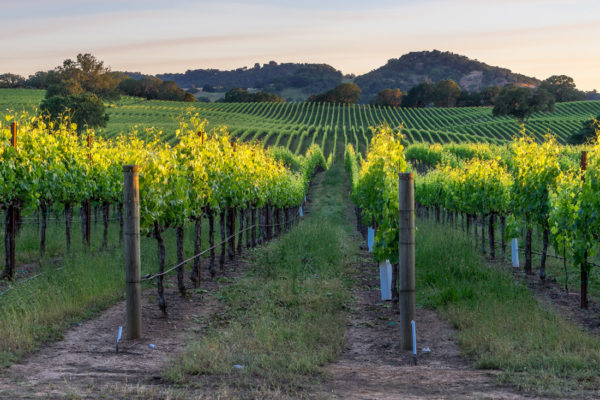 most beautiful places in united states - healdsburg california