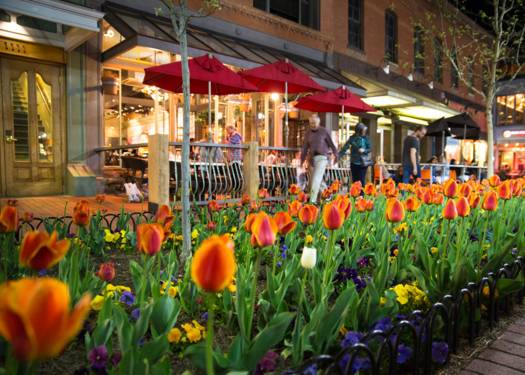 best places to travel alone in US - popular Pearl Street Mall with people, tulips and lights in boulder, colorado