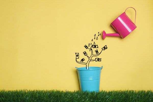 pink watering can watering a drawn tree with dollar bills as leaves
