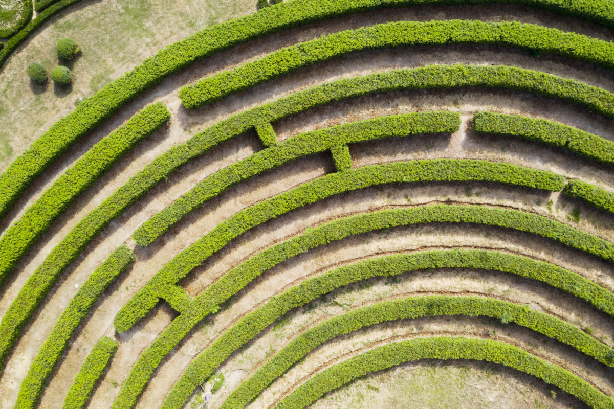 aerial view of a green maze garden to symbolize finding success