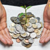 A plant growing in coins within a book
