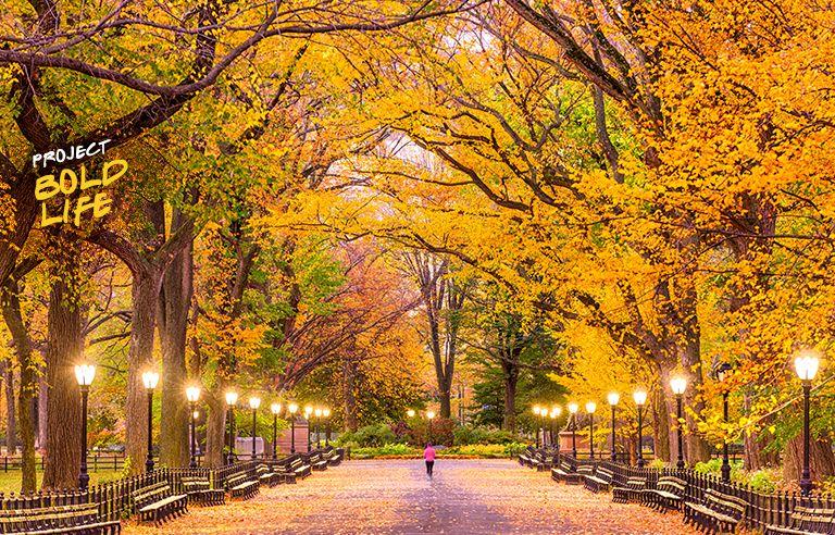 Someone walking through Central Park on their way to Bethesda Fountain